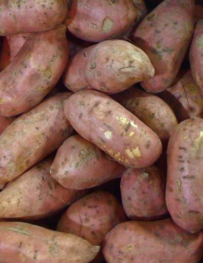 1-yamsweet-potato_4423869606_o