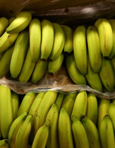 banana_4439607022_o