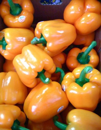 holland-orange-pepper_4423087423_o