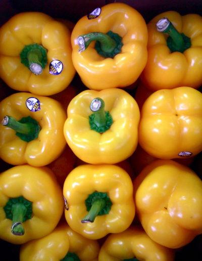 holland-yellow-pepper_4423087315_o
