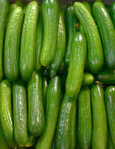 persian-cucumbermini-seedless-cuc_4423871984_o