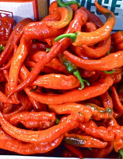 red-longhot-pepper_4423104195_o