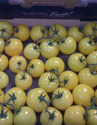 yellow-stem-tomato-on-the-vine-11lb_4423877526_o