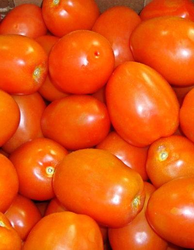 exlg-roma-tomato-mexican_4423749488_o