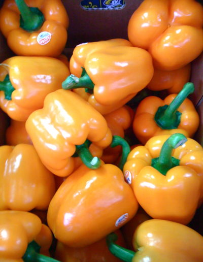 holland-orange-pepper_4423087423_o