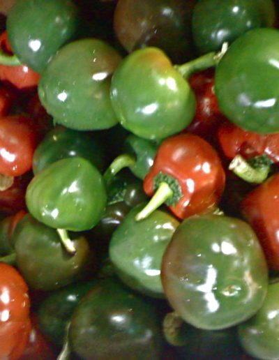 mix-red-cherry-hot-pepper_4423871750_o