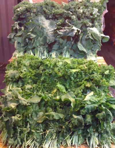 southern-greens-kalecollardmustardturnip-top_4423114717_o